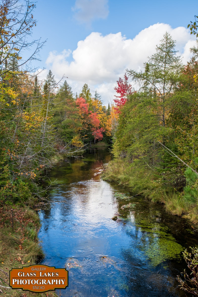 Horton Creek in Fall 2